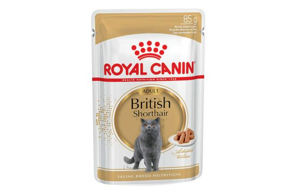 Royal Canin British Shorthair en sauce